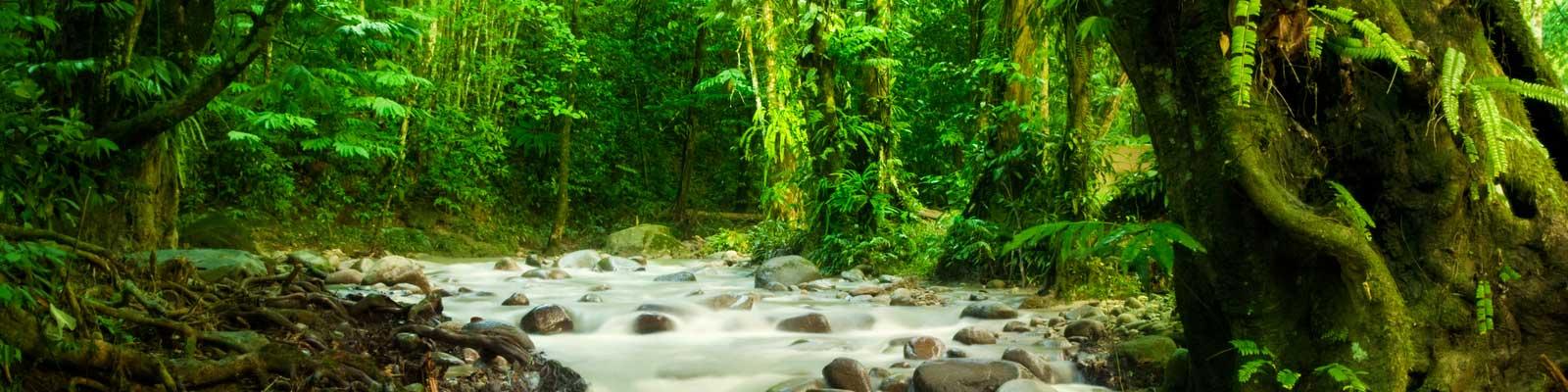 Costa Rica Privatimmobilien - Ferienhaus, Villa, Bauernhaus